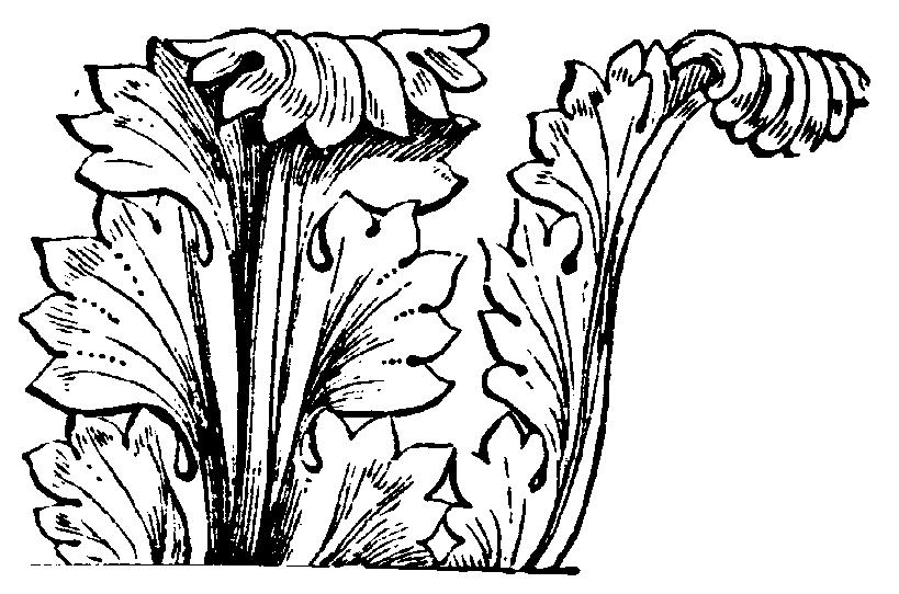 Acanthusblad,_Nordisk_familjebok