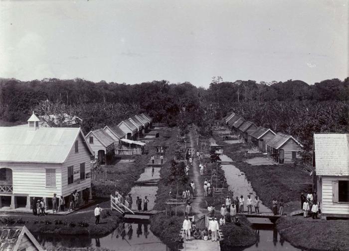 Uitzicht vanaf de 2e verdieping over de plantage