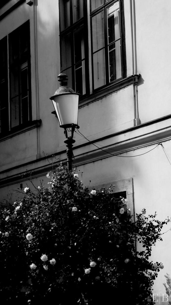 O_Wenen2012-lantaarnpaal (2)
