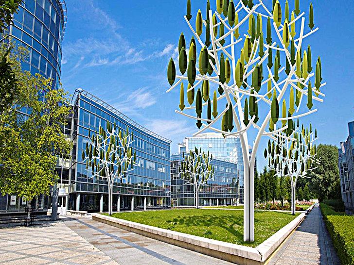 Wind-tree-urban